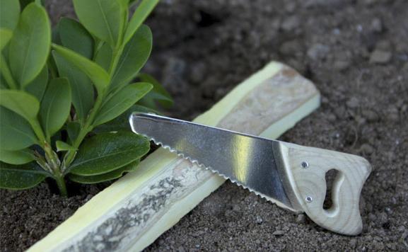 ferraxe de prata-serra